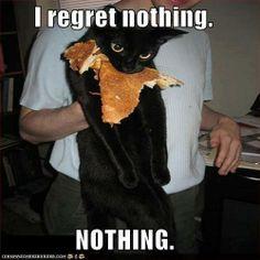 I regret nothing :) Black cat attitude...