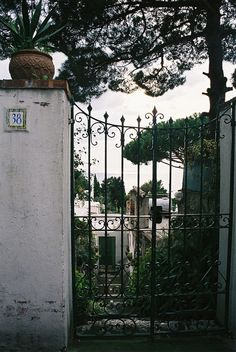 Capri. The villa gate