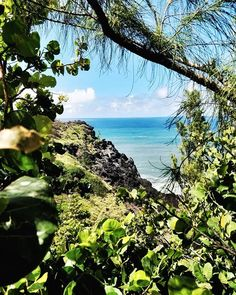 Souvenir d'un petit coin de paradis #grandAnse #latergram #MaMaison #holidays #ReunionIsland #LaReunion #Plage #vacances #mer #sea #OnePlus5T #snapseed
