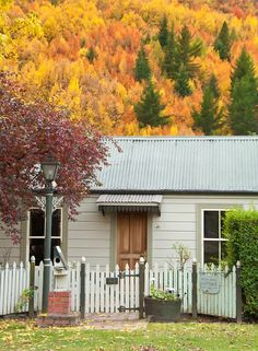 Old cottage & hill side covered in autumn / fall colour / color.  Arrowtown, South Island New Zealand