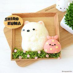 Shirokuma & Furoshiki  Sumikko Gurashi rice