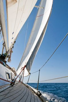 Bientôt je serai un vrai loup de mer! Mais pour l'instant, je reste plutôt immobile quand ça gite! -Sailing boat | Flickr