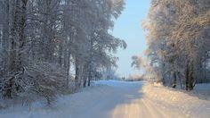 Zimski pejzaži - Page 6