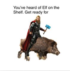 Thor on a boar! Funny Marvel Memes, Avengers Memes, Stupid Funny Memes, Marvel Avengers, Hilarious, Marvel Films, Marvel Characters, Loki, Thor