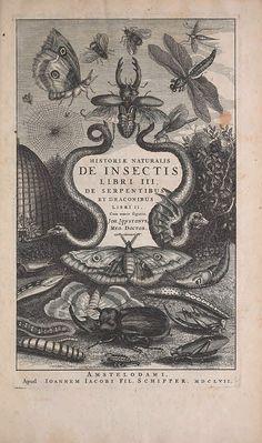 Historiae naturalis de quadrupedibus libri :. Amstelodami :Apud Ioannem Iacobi Fil. Schipper,MDCLVII [1657].