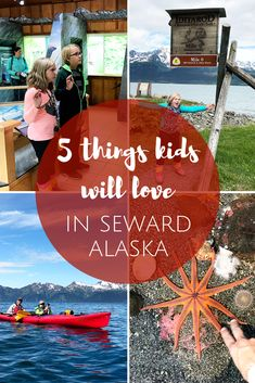 5 Fun Things to do in Seward Alaska with Kids The Beckham Project Alaska Cruise, Alaska Travel, Alaska Trip, Alaska Sealife Center, Alaska National Parks, Seward Alaska, Alaska Adventures, Visit Alaska, Kenai Fjords
