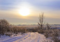 The winter road on sunset by Natalia Flora on 500px