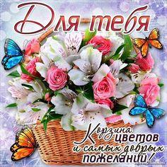 С Днем рождения Поздравления Цветы Пожелания Привет Друзьям