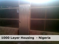 for the building materials excluding labour. 500 birds housed each side. Poultry House, Fish Farming, Buying Wholesale, Coops, Building Materials, Agriculture, Scale, Birds, English