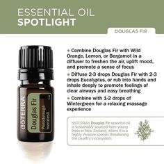 doTERRA Douglas Fir essential oil is sustainably sourced from young trees in New Zealand, where it is a highly invasive species threatening the country's ecosystem. By harvesting the young Douglas Fir trees and using them for essential oil, doTERRA is helping to combat the environmental impact of the trees overtaking the land while providing a premium conifer essential oil.  Click the link in profile to learn more about Douglas Fir essential oil. #douglasfir #doterra #eospotlight…