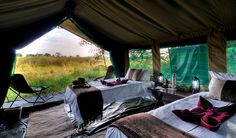 Footsteps Camp is located in the Okavango delta in northern Botswana.    This is remarkable little camp has just three tents and a tiny mess area, very old fashioned in a way that appeals greatly to safari traditionalists and outdoorsy people in general.