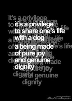It's a privilege.