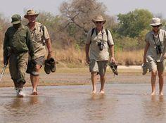 Step into the Wild - river walk. River Walk, Africa Travel, Big Game, Safari, Walking, Walks, Hiking