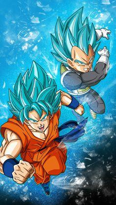 Goku and Vegeta SSB