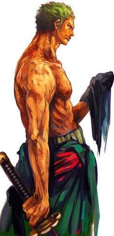 Roronoa Zoro,Straw Hat Pirates - One Piece,Anime