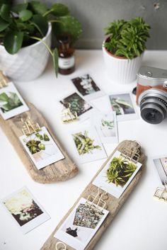 Daniela Rs Rodriguezsanchezd41 En Pinterest Descubre Colecciones De Sus Ideas Favoritas