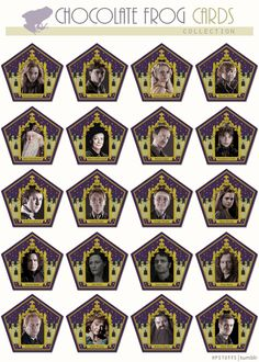 Harry Potter Stuff - Chocolate Frog Cards