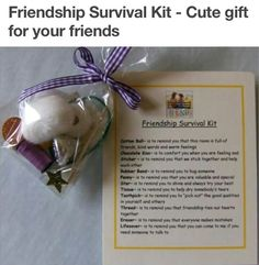 Friendship survival kit