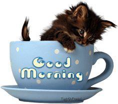Good Morning...:)