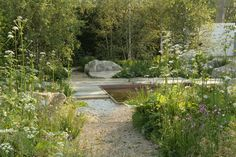 Die Chelsea Flower Show von Sarah Price - Garten
