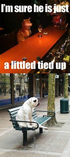 Dog gets stood up awww