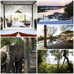 Toka Leya is situated in Zambia's Mosi-oa-Tunya National Park on the banks of the mighty Zambezi. Twelve luxurious en-suite tents with expansive decks soak up the dramatic views & amazing wildlife. Wooden walkways snake between the units & main area, limiting our footprint on this pristine area. The camp's generous dining, lounge & bar areas offer a scenic spot for pre- or post-safari R&R. Wooden Walkways, Bar Areas, Footprint, Tents, Wilderness, Safari, Maine, Snake, National Parks