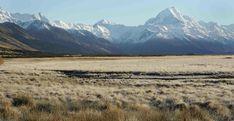 mackenzie region new zealand New Zealand Landscape, Remote, Mountains, Google Search, Nature, Travel, Naturaleza, Viajes, Destinations