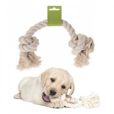 Give your dog the double knotted dog rope! Ideal for keeping pets entertained, strengthening teeth and developing the animal's instincts and abilities. Highly resistant rope Length x thickness approx.: 40 x 2 cm Dog Harness, Dog Leash, Love Your Pet, Your Dog, Pet Trainer, Dog Water Bottle, Dog Sounds, Pets For Sale, Dog Feeder