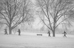 blizzard juno photos | ... buy 01 14 caption adventure in the snow storm snowstorm juno has