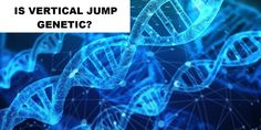 Having a good vertical jump can be an advantage in many sports and other areas in life. But, is the vertical jump genetic? Can it be improved? Muscle Function, Structure And Function, Genetics Traits, Guinness World, Plyometrics, High Jump, Training Day, Lean Body, Sports