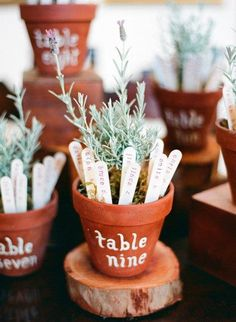 Creative escort cards and table #'s