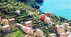 Eventinvacanza ritorna con le migliori strutture in provincia di La Spezia   #cinqueterre #laspezia #lerici #sarzana #vezzanoligure #bedandbreakfast #guesthouse #affittacamere #hotel #albergo Hotel, Cinque Terre, Dolores Park, Travel, Trips, Traveling, Tourism, Outdoor Travel, Vacations