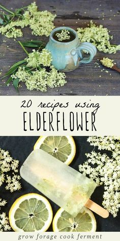 When elderflowers are in season make these great elderflower recipes! Includes recipes for elderflower cordial, liqueur, tea, jelly, cake, and more! #elderflower #foraging