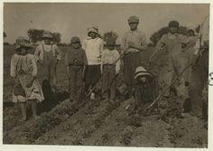 Beet Farmers | Flickr - Photo Sharing!