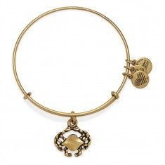 Crab Expandable Wire Bangle - Top