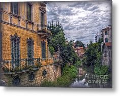 Padua Metal Print featuring the photograph Back View by Hanny Heim, Snowbird Photography