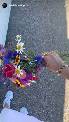 Flower Aesthetic, Summer Aesthetic, Sky Aesthetic, Travel Aesthetic, My Flower, Pretty Flowers, D N Angel, Colorfull Wallpaper, Cactus Plante
