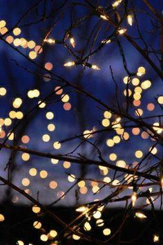 Christmas Lights #bokeh