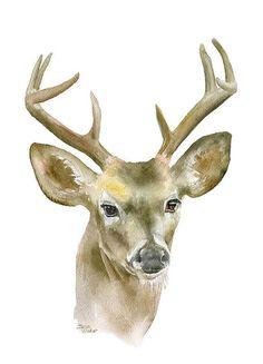 Buck Watercolor Print 24x36 Large Fine Art Poster - Deer Antlers Painting