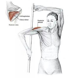 Deltoid stretch