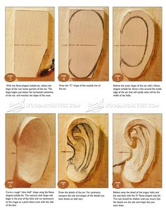 #2041 Carving Ear - Wood Carving Techniques - Wood Carving