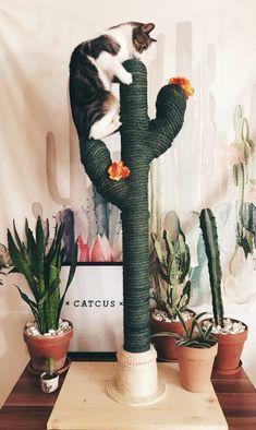 Cactus for cats catcus scratching post cat tree boho cat tower katzenpony perlenmuster crafts 4 camp perlenbasteln camp crafts katzenpony perlenbasteln perlenmuster Cat Tree Designs, Cat Room, Cat Furniture, Furniture Ideas, Children Furniture, Retro Furniture, Furniture Online, Furniture Layout, White Furniture