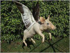 Strange animals, Andrew Lancaster: flying pig
