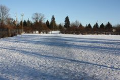 Winter at the Dog Park with snow Dog Park, Wisconsin, Best Friends, Community, Snow, Winter, Dogs, Outdoor, Beat Friends