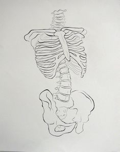 Skeleton Drawing by Sinailts on DeviantArt Skeleton Drawings, Skeleton Art, Easy Drawings, Tatto Ink, Medical Drawings, Anatomy Art, Hippie Art, Art Reference Poses, Fashion Sketchbook