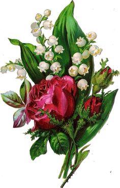 Oblaten Glanzbild scrap die cut chromo Rose 13,8cm Maiglöckchen lily of valley