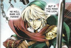 legend+of+zelda+twilight+princess+link | The Legend of Zelda The First Link
