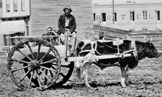 RED RIVER OX CART