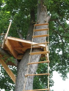 Design Ideas For Treehouses Pergolas And Gazebos Treehouse And