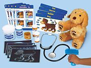 I could make this little vet dramatic play set.  Such a cute idea!